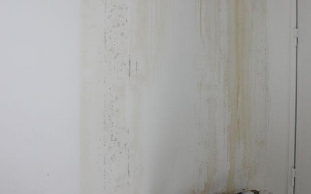 Dégât Des Eaux Rénovation D Un Appartement Sur Toulouse
